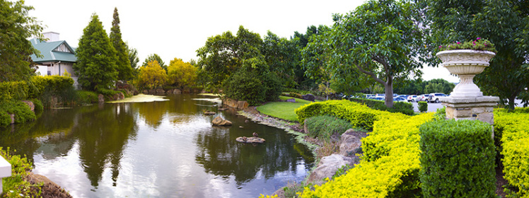 untitled_panorama4